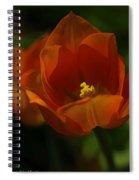 Orange Tulip Art Spiral Notebook