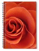 Orange Twist Rose 5 Spiral Notebook