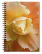 Orange Yellow Begonia Flower Spiral Notebook
