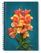 Orange Yellow Snapdragon Flowers Spiral Notebook