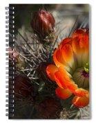 Orange You A Hedgehog  Spiral Notebook
