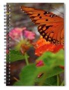 Orange You Pretty Spiral Notebook