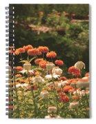 Orangeade Spiral Notebook