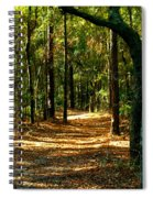 Orangedale Path Spiral Notebook