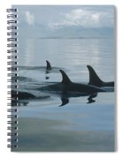 Orca Pod Johnstone Strait Canada Spiral Notebook