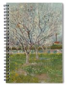Orchard In Blossom Plum Trees Spiral Notebook
