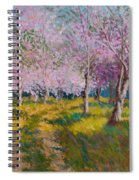 Orchard Light Spiral Notebook