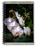 Orchid 1 Triptych Spiral Notebook