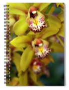 Orchid 11 Spiral Notebook