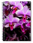 Orchid 12 Spiral Notebook