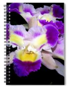 Orchid 13 Spiral Notebook
