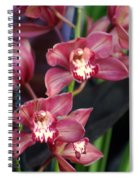 Orchid 14 Spiral Notebook