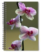 Orchid 16 Spiral Notebook