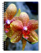 Orchid 17 Spiral Notebook