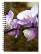 Orchid 18 Spiral Notebook