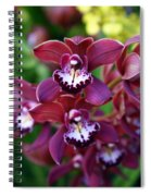Orchid 20 Spiral Notebook