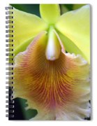 Orchid 21 Spiral Notebook