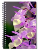 Orchid 25 Spiral Notebook