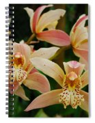 Orchid 255 Spiral Notebook