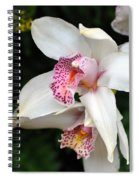 Orchid 29 Spiral Notebook