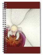 Orchid-3 Spiral Notebook
