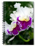Orchid 6 Spiral Notebook
