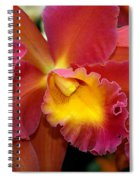 Orchid 8 Spiral Notebook