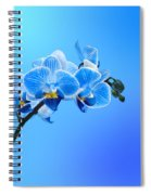 Orchid Blue Spiral Notebook