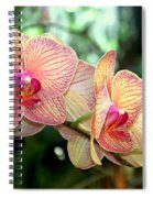 Orchid Delight Spiral Notebook