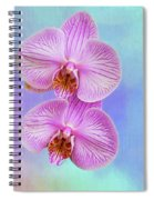 Orchid Delight - Two Blooms Against A Rainbow Background Spiral Notebook