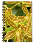 Orchid Drama Canvas Spiral Notebook