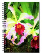 Orchid Flowers Color 1 Spiral Notebook