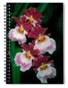 Orchid Group Spiral Notebook
