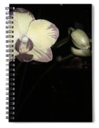 Orchid In Bloom Spiral Notebook