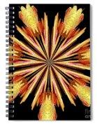 Orchid Kaleidoscope 10 Spiral Notebook