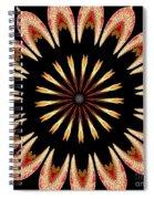 Orchid Kaleidoscope 3 Spiral Notebook