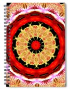 Orchid Kaleidoscope 6 Spiral Notebook