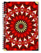 Orchid Kaleidoscope 9 Spiral Notebook