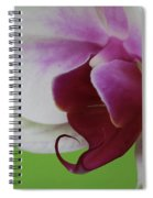 Orchid On Green Spiral Notebook