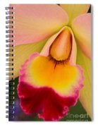 Orchid Painting Spiral Notebook