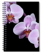 Pink Orchid I Spiral Notebook