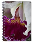 Orchid Ruffle Spiral Notebook
