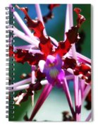 Orchid Spider Spiral Notebook