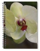 Orchid White Trio Spiral Notebook