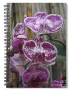 Orchid With Purple Patches Spiral Notebook