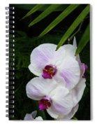 Orchids #1 Spiral Notebook