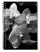 Orchids In Black And White Spiral Notebook