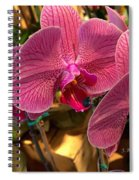 Orchids In Bloom Spiral Notebook