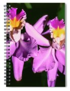 Orchids In Costa Rica Spiral Notebook