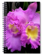Orchids In Fuchsia  Spiral Notebook